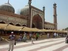 maja masjid porte