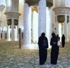 abu dhabi (14)