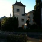 mosquée de geneve (4)