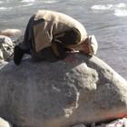 prière sur une pierre