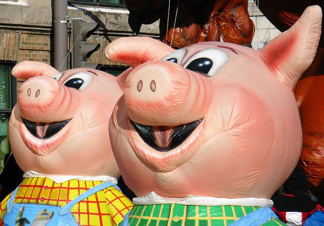 cochons contre les mosquées