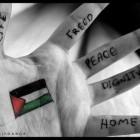 palestine espoir de paix