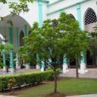 mosquee-al-azim-kuala-malaisie (3)