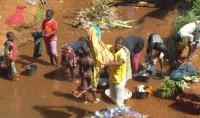LIFE – Projet 99: Il était une fois dans le village de Njiketkié