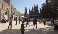 Les écoles coraniques de la mosquée Al Aqsa